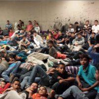 immigrant_children