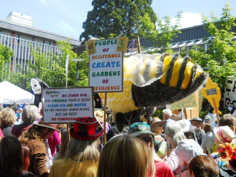 2013 Monsanto protest in Wayne Morse Free Speech Plaza